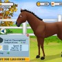 Grooming arabian horse in horse life adventures game